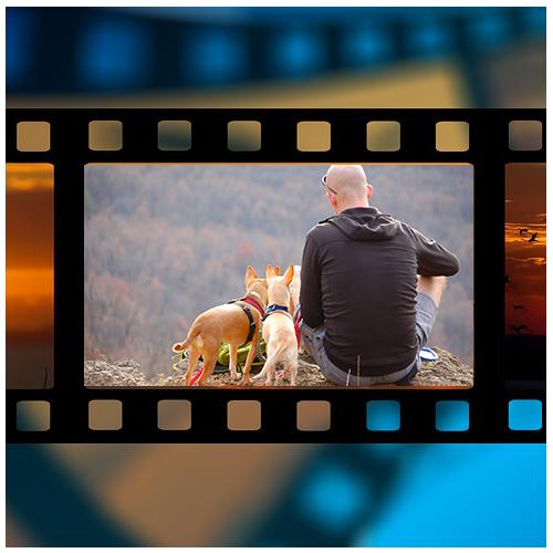 Video conmemorativo de su mascota